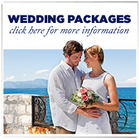 Cruise Honeymoon Registry